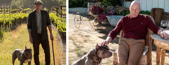 Stewart: Why Picard Has A Dog