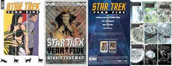 Star Trek: Year Five #17 Preview